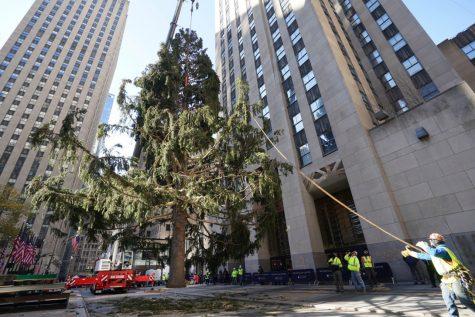 The 2020 Rockefeller Tree, NY Post